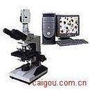 三目型生物显微镜/电脑型生物显微镜