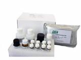 科研菜豆凝集素(PHA)ELISA试剂盒