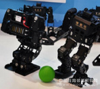 智能佳 金刚娱乐表演机器人