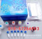 牛免疫球蛋白A(IgA)ELISA试剂盒说明书