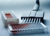 DHEA试剂盒,人脱氢表雄酮ELISA试剂盒价格