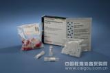 小量全血基因组DNA提取试剂盒(溶液型)