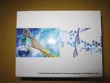 仓鼠γ肽ELISA试剂盒