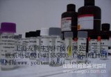 鸭白介素8(IL-8/CXCL8)ELISA Kit