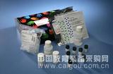 胆碱酯酶(ChE)检测试剂盒(羟胺三氯化铁比色法)