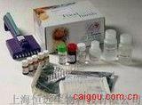 豚鼠生长激素ELISA试剂盒