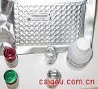类风湿因子IgA(RF IgA)Elisa kit