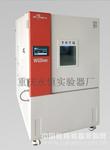 准型恒定低温试验箱WD系列