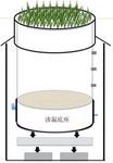 多功能小型蒸渗仪