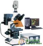 三目荧光显微镜TYU-50C