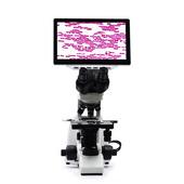 數碼生物顯微鏡 測量分析顯微鏡