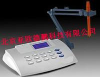 溶解氧分析仪/溶氧仪