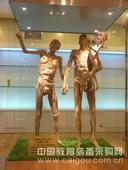 人体塑化标本*医用*塑化标本*解剖标本*人体解剖*整体塑化及造型