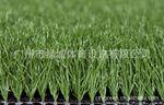 高尔夫草皮,绿城 高尔夫球场人造草坪