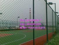 供應PVC包塑鐵絲網 PE包塑圍網