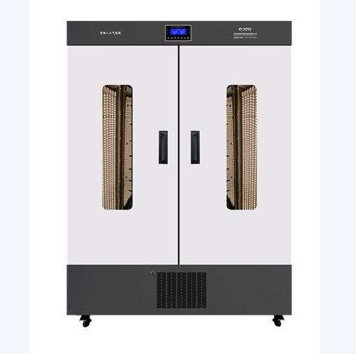 人工气候箱 RXZ-800