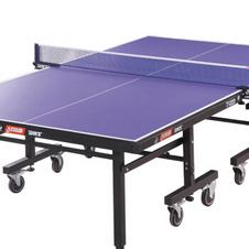 红双喜【DHS】乒乓球台 折叠移动式专业比赛乒乓球桌T1223