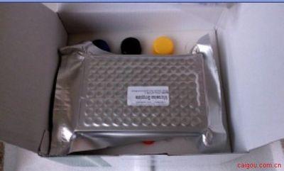人巨噬细胞炎性蛋白1β(MIP-1β/CCL4)ELISA kit