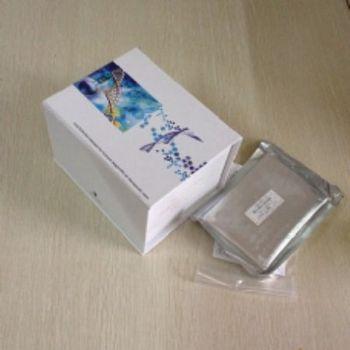 大鼠绒毛膜促性腺激素(CG)ELISA试剂盒