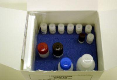 人腺病毒抗原(ADV-Ag)ELISA试剂盒