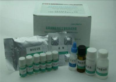 豚鼠卵清蛋白特异性IgE(OVA sIgE)ELISA试剂盒