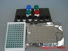 人脂蛋白α(Lp-α)ELISA试剂盒