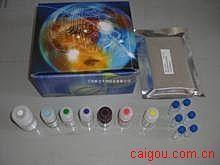人α半乳糖基抗体(Gal)ELISA试剂盒