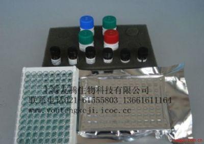 巨细胞病毒抗体IgG定量  ELISA试剂盒