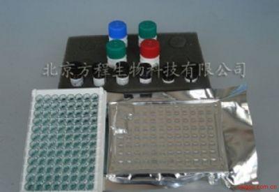北京酶免分析代测大鼠盐皮质激素受体(MR)ELISA Kit价格