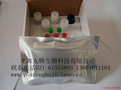 人半胱氨酸蛋白酶抑制剂/胱抑素C(Cys-C)ELISA Kit