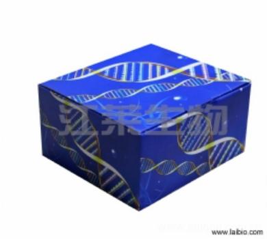 人核因子-κB亚基p65亲和肽(NF-κBp65)ELISA试剂盒