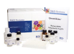 小鼠胰岛素ELISA试剂盒价格,INS