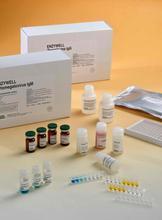 C/EBPα ELISA试剂盒 进口elisa试剂盒
