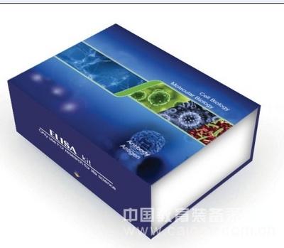 菊花B病毒 (CVB) ELISA试剂盒