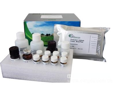 大鼠骨桥素(OPN)ELISA试剂盒