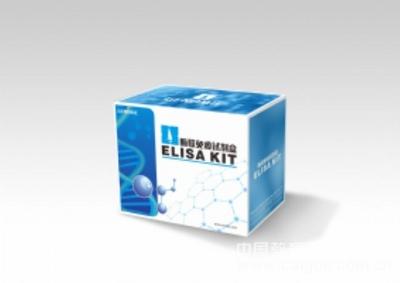 人XCR1试剂盒,XCR1 ELISA KIT,人XC趋化因子受体1试剂盒