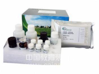 优势促销 山羊免疫球蛋白M(IgM)ELISA检测试剂盒