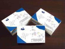 克林霉素磷酸酯标准品|对照品价格