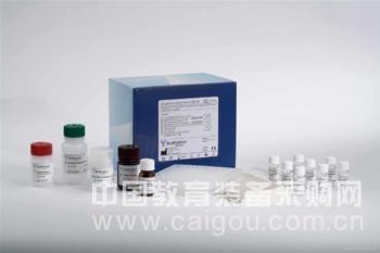 小鼠血管生成素4(ANG-4)ELISA试剂盒