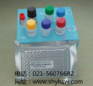 可溶性白介素-2受体(sIL-2R )ELISA试剂盒