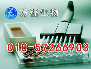 鱼骨钙素/骨谷氨酸蛋白(OT/BGP)ELISA试剂盒价格