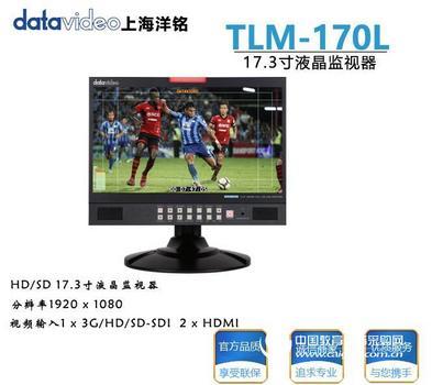 洋铭TLM-170L HD/SD 17.3寸液晶监视器