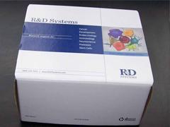 人雌三醇(Estriol)ELISA试剂盒