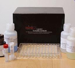 大鼠凝血因子Ⅷ相关抗原(FⅧ-Ag)ELISA Kit