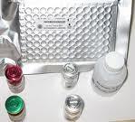 康乃馨环斑病毒(Carnation Ringspot Virus) ELISA试剂盒