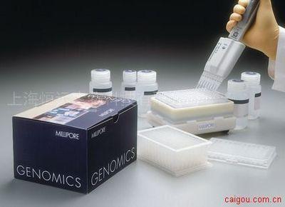 人促肾上腺皮质激素ELISA试剂盒
