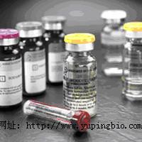 人P选择素(P-selectin)ELISA试剂盒