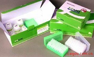 人血小板因子4Elisa试剂盒,PF-4/CXCL4试剂盒