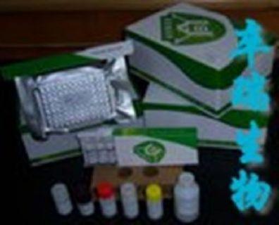 人Elisa试剂盒:前列腺素E2(PGE2)Elisa试剂盒