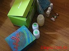 人Elisa-多聚ADP核糖聚合酶试剂盒,(PARP)试剂盒